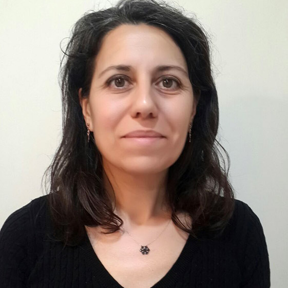 Sema Bayraktar Tür Faculty Member, PhD